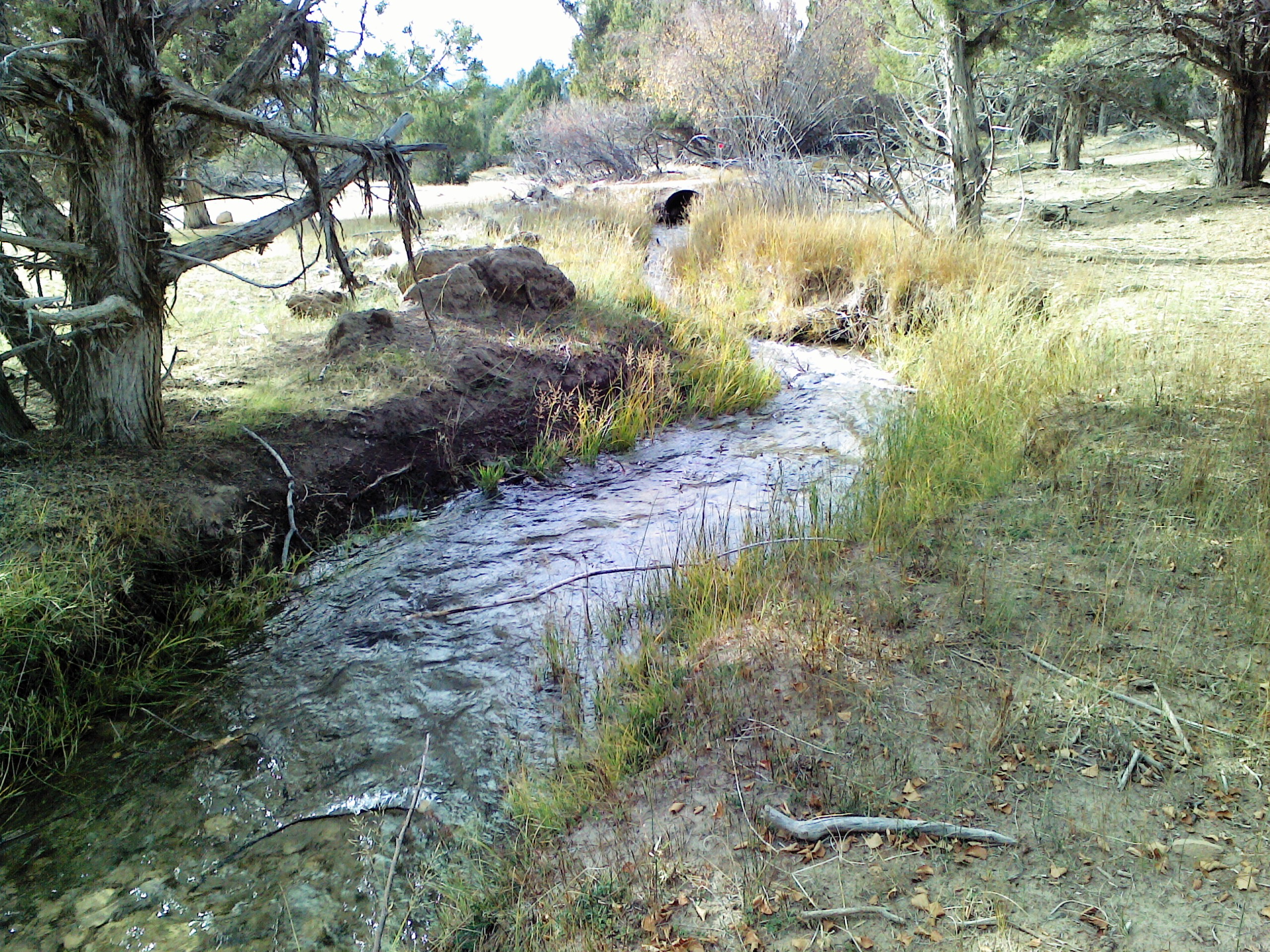 rough stream